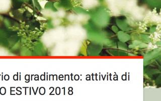 Questionario Sportello Estivo 2018