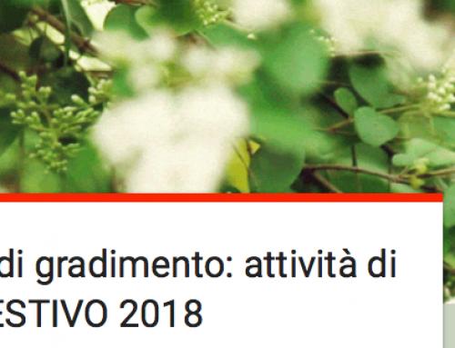 Questionario di gradimento: attività di SPORTELLO ESTIVO 2018